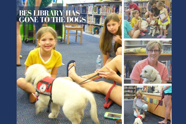 Bes library has gone to the dogs