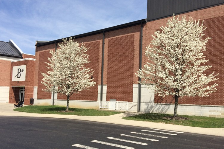 Spring has sprung in the district