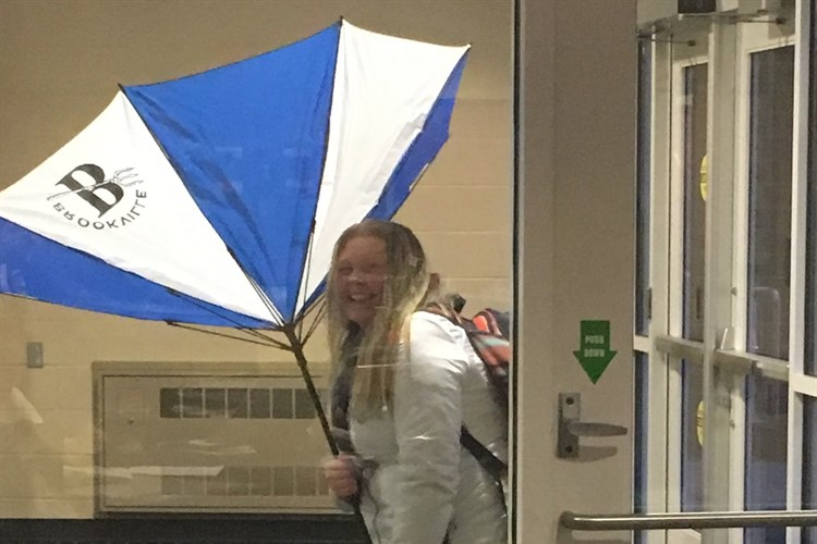 Windy Day for Chloe Cousineau
