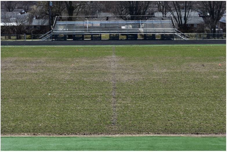 Memorial Field - Current Condition